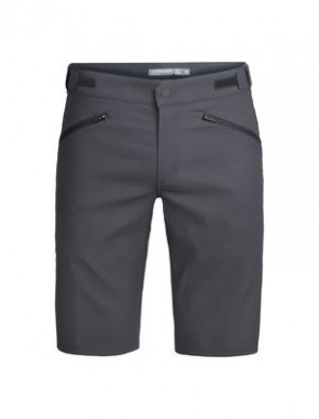 Icebreaker Persist Shorts Men